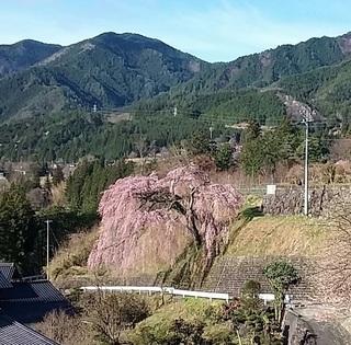20160405iwataro.jpg