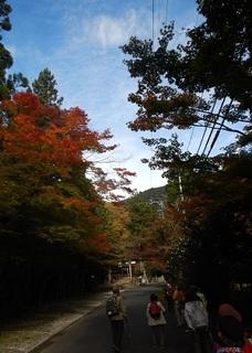 20161110大矢田.jpg