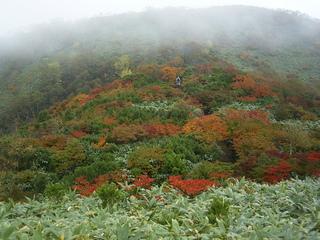 川上岳の秋1.JPG
