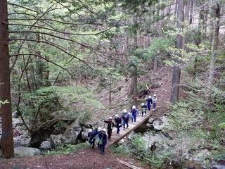 森を歩く2.jpg